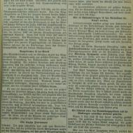 1930_Riesenbrand_Jungmeier.JPG